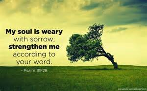 Psalm 119 28
